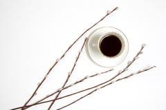 Xícara de café branca com galhos do salgueiro em uma tabela de madeira branca Imagem de Stock Royalty Free
