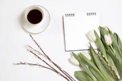 A xícara de café branca em um caderno branco e um salgueiro ramificam em uma tabela de madeira branca Foto de Stock Royalty Free