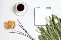 Xícara de café branca em um caderno branco, tulipas brancas, um ramo do salgueiro em uma tabela de madeira branca Copie o espaço Imagem de Stock Royalty Free