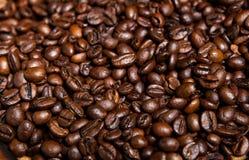Xícara de café completamente de feijões de café Close-up Fotos de Stock
