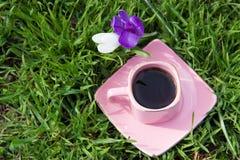 Xícara de café cor-de-rosa em uns pires dos dois açafrões no flowe da grama e Imagens de Stock Royalty Free