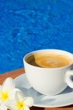 Xícara de café do verão Imagens de Stock