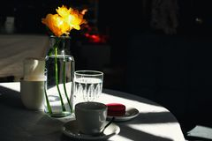 Xícara de café e narcisos amarelos amarelos fotografia de stock