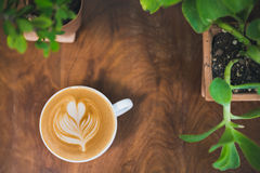 Xícara de café na tabela de madeira, planta pequena, verde, fundo Fotos de Stock Royalty Free