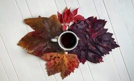 Xícara de café nas folhas de outono fotografia de stock royalty free