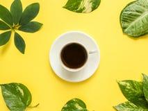 Xícara de café no centro no fundo amarelo com folhas verdes Imagens de Stock Royalty Free