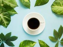 Xícara de café no centro no fundo azul com folhas verdes Fotografia de Stock Royalty Free