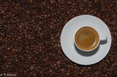 Xícara de café quente em feijões de café Fotografia de Stock