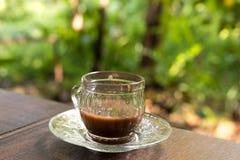 Xícara de café sobre a plantação borrada da árvore de café com iluminação do sol Ilha tropical de Bali, Indonésia Bali autêntico Imagem de Stock