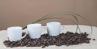 Xícaras de café nos feijões Imagens de Stock Royalty Free