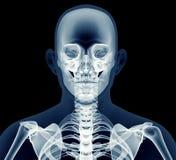 X射线辐射在黑色隔绝的一个人的图象 库存例证