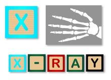 x是为X光芒 库存例证