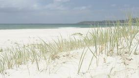 4x4 στην παραλία απόθεμα βίντεο