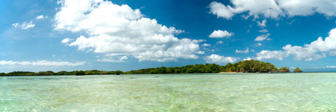 12x36移动热带海滩全景 免版税库存照片