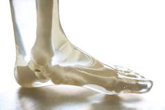 X-射线幽灵脚 免版税库存图片