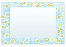 导航花卉框架10 x 15,春黄菊样式 免版税图库摄影