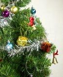 X& x27; albero di mas Fotografia Stock