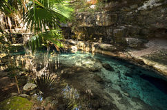 X-Batun Cenote - natural lagoon with transparent turquoise water Royalty Free Stock Image