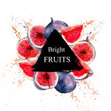 & x22;Bright Fruits& x22; sale and other flyer template with lettering. Watercolor illustration. Stock Photography
