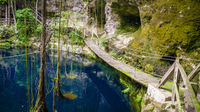 X`Canche Cenote cenote is close to Ek Balam, Yucatan, Mexico. Royalty Free Stock Image
