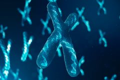 X-chromosomen met DNA die de genetische code dragen Geneticaconcept, geneeskundeconcept Toekomstige, genetische veranderingen stock foto