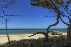 4x4 conduit sur la plage d'île de Moreton par des arbres Images libres de droits