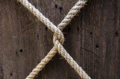 X corde Photographie stock libre de droits