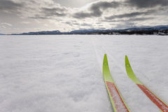 X-country ski winter sport Royalty Free Stock Photography