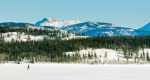 X-Country Skier frozen Lake Laberge winter scenery royalty free stock photos