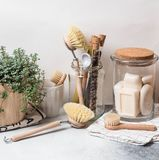 Zero waste concept. Eco-friendly kitchen set. Brushes, soap in jar, spices in glass tubes and plant in wood flowerpot. X-defaultZero waste concept. Eco-friendly royalty free stock images