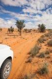 4x4 en el Kalahari Foto de archivo libre de regalías