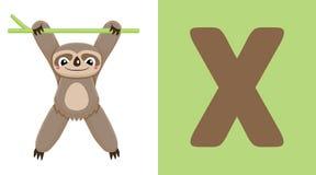 X est pour Xenarthra Lettre X Xenarthra, illustration mignonne blanc animal de vecteur de fonds d'image d'alphabet Photographie stock libre de droits