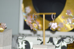 x jewelery和手表品牌Jewelery的国际性组织陈列与宝石豪华亮光的渴望 免版税库存图片