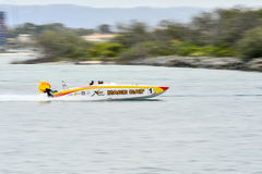 X-Katzen-Schnellboot Lizenzfreie Stockfotografie