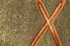 X mark on the bark of a tree Stock Photo