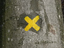 X Mark on a Tree Royalty Free Stock Photos
