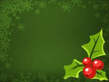 X-mas background. Christmas background with holly plant Stock Image