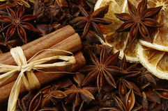X-mas spices, Anise and cinnamon Royalty Free Stock Images