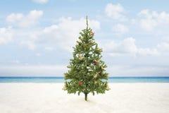 Free X-mas Tree Royalty Free Stock Images - 62136829