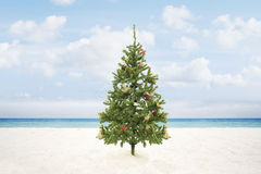 X-mas tree Royalty Free Stock Images