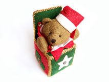 X-mass bear stock photography