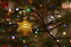 X-mass tree back Stock Photography