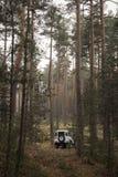 4x4 in mezzo alla foresta Immagini Stock