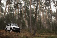 4x4 in the middle of the forest. Stock Photography