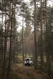 4x4 in the middle of the forest. Stock Images