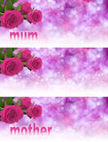 3 x Mother's Day Website Banners. Three pink rose heads in left hand corner with soft bokeh pale pink backgrounds graduating to white and the word mum and mother Stock Image