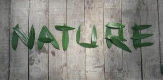 & x22; NATURE& x22;印刷术写与金合欢叶子反对土气木背景 免版税库存图片