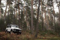 4x4 no meio da floresta Fotografia de Stock