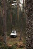 4x4 no meio da floresta Imagens de Stock