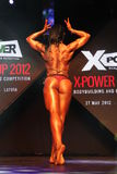 X-POWER cup 2012 Royalty Free Stock Photography